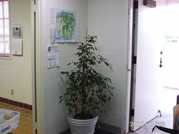 Institute01220026